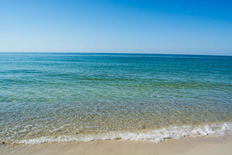 Gulf Ss And Orange Beach Alabama